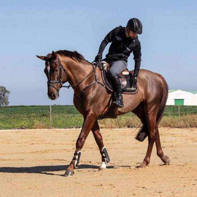 Gaviño: «Salí de casa zumbando para mantener al caballo»