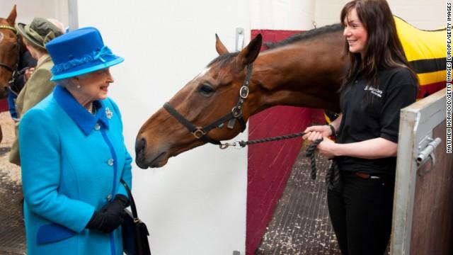 Los caballos reconocen las emociones humanas, dice estudio